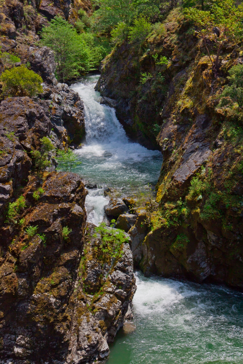 Or-Rogue River Wilderness-Rogue River Trail-Mule Creek Canyon